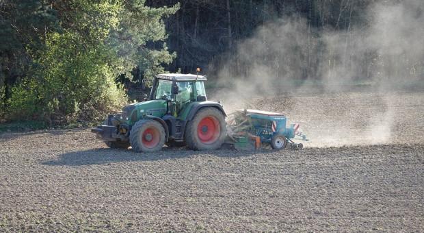Ukraina: Mniejsze plony z powodu niedoboru wilgoci w glebie