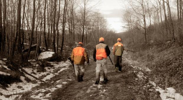 MŚ: Do lasów nie mają wstępu także myśliwi