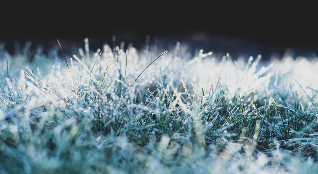 Prognoza pogody na 3 i 4 grudnia