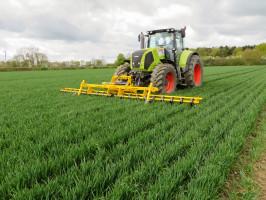 Obecny na polskim rynku Claydon ma wswej ofercie prosty pielnik do niszczenia chwastów wmiędzyrzędziach zbóż