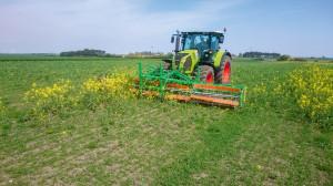 CombCut może pracować efektywnie, kiedy chwasty są wyższe od rośliny uprawnej