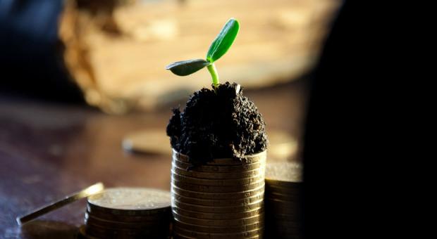 Będzie pomoc dla zadłużonych gospodarstw