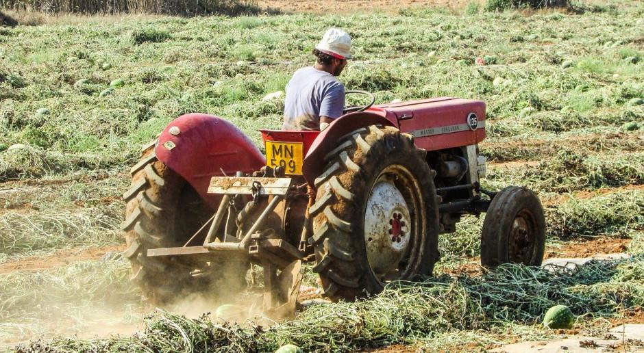 USA liberalizują wymagania dotyczące pracowników sezonowych w rolnictwie
