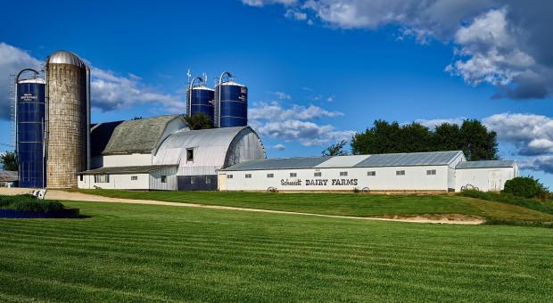 Rabobank: Rynek mleka doświadczy trzech fal uderzeniowych