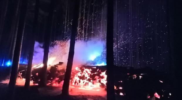 Płonęło drewno składowane w lesie
