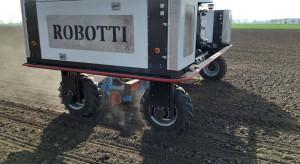 Robot sieje kukurydzę w Czechach
