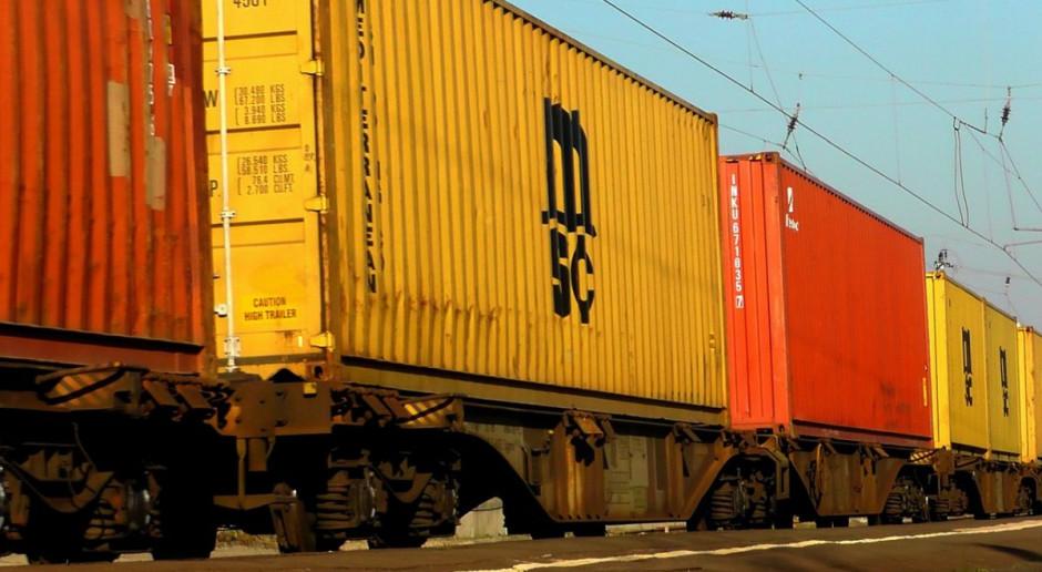 Opolskie: Coraz więcej potrąceń zwierząt przez pociągi