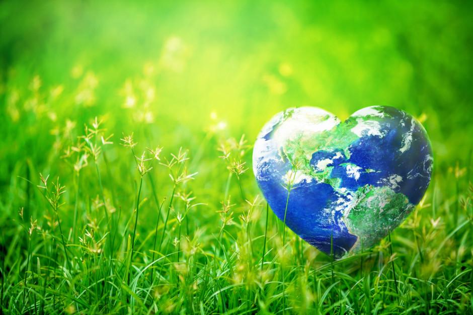 Dzień Ziemi - największe ekologiczne święto świata