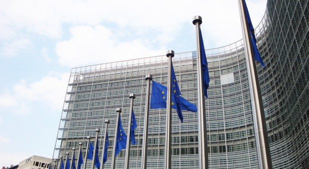 KE: Prognoza krótkoterminowa dla rynków rolnych UE w 2020 r.