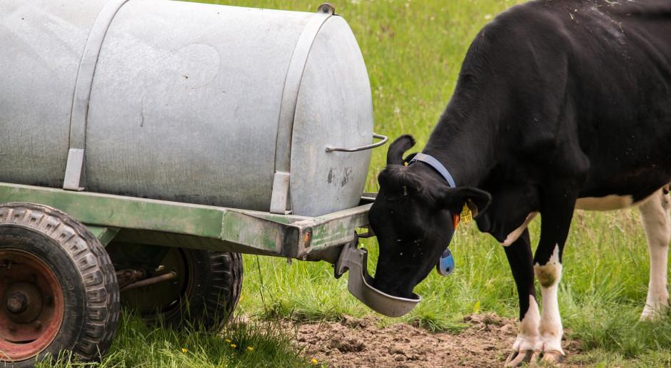 Rolnik na kwarantannie lub w szpitalu – zwierzętami zajmie się gmina