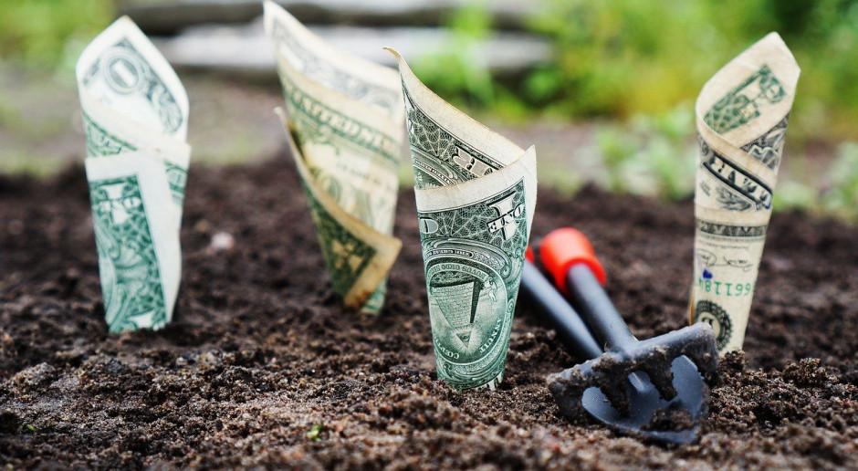 USA: Ponura perspektywa cen i dochodów rolniczych