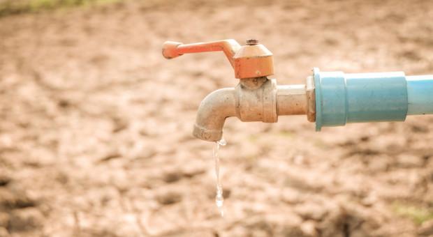 Dowiedz się, jak PGW Wody Polskie chce walczyć z suszą w rolnictwie