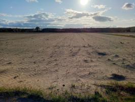 Niestety, jest to coraz częstszy widok, jaki można spotkać na polach uprawnych z powodu suszy, Fot. Radosław Zieniewicz
