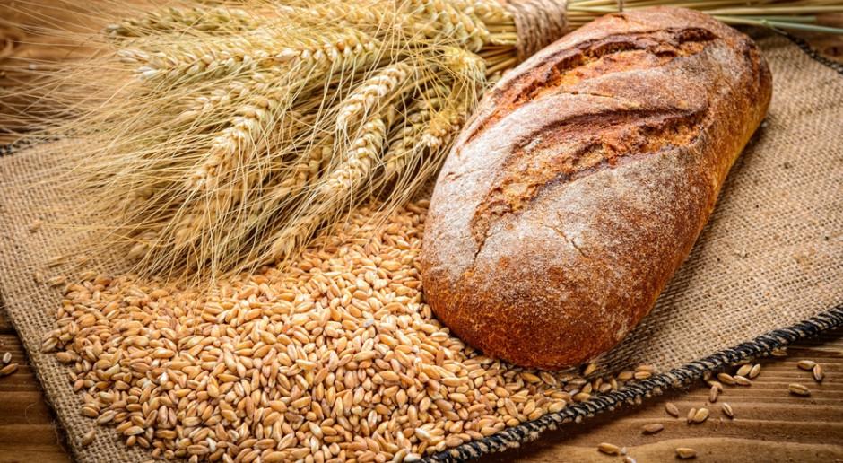 Niska podaż pszenicy konsumpcyjnej na rynku krajowym