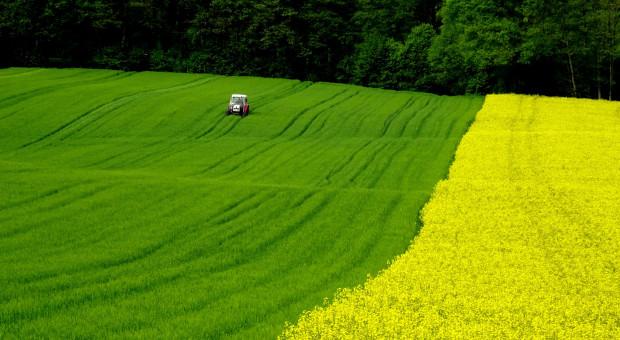 Ukraina: Zełenski podpisał ustawę o otwarciu rynku ziemi
