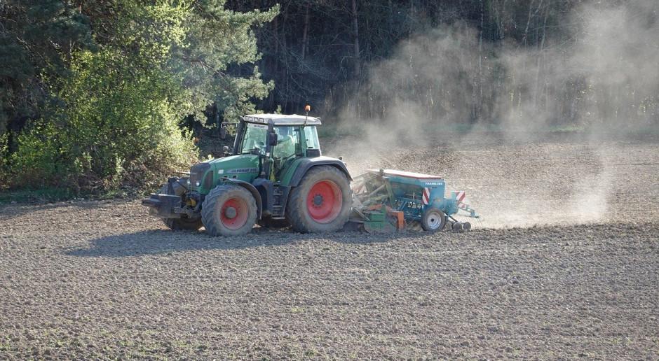 W Rosji zasiano rośliny jare na ponad 8 mln ha