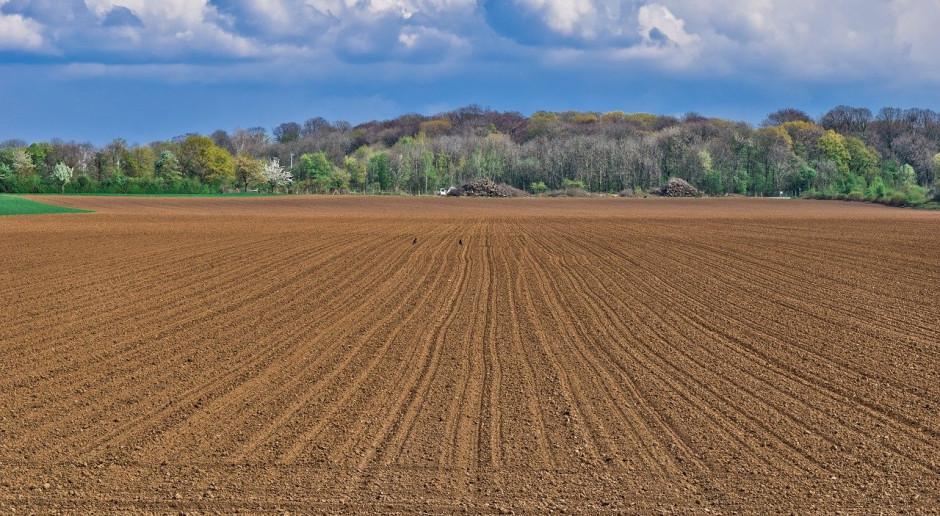 Dania: Rolnicy chcą ochrony przed inwestorami