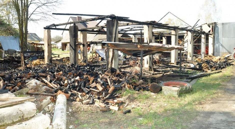 W pożarze gospodarstwa spłonęły budynki i maszyny rolnicze