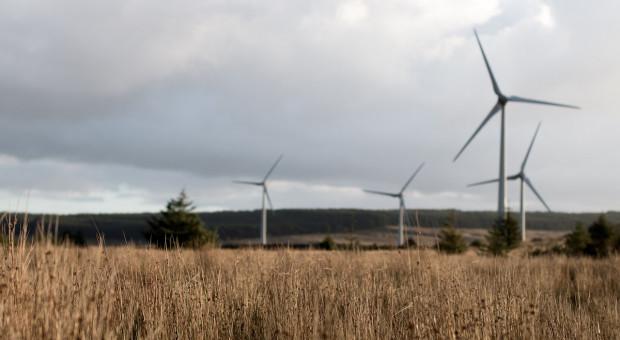 Finlandia: Turbiny wiatrowe nie zagrażają zdrowiu