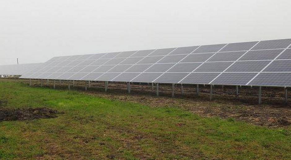 PSF: tylko energia ze słońca może szybko i tanio dać radę suszy i upałom
