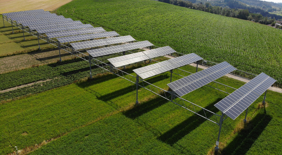 Agrofotowoltaika: połączenie produkcji rolnej z produkcją prądu