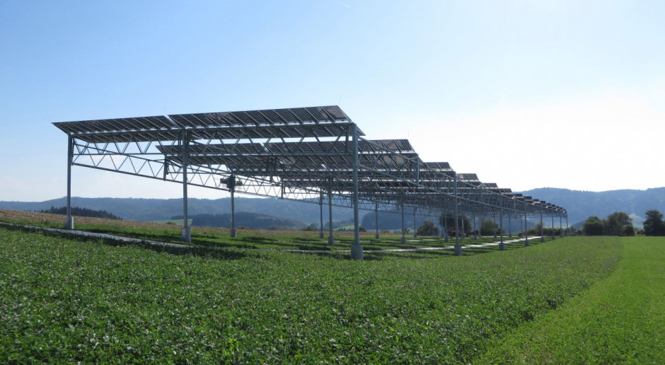 Większe dotacje czy agrofotowoltaika - co przyspieszy rozwój rolnictwa?