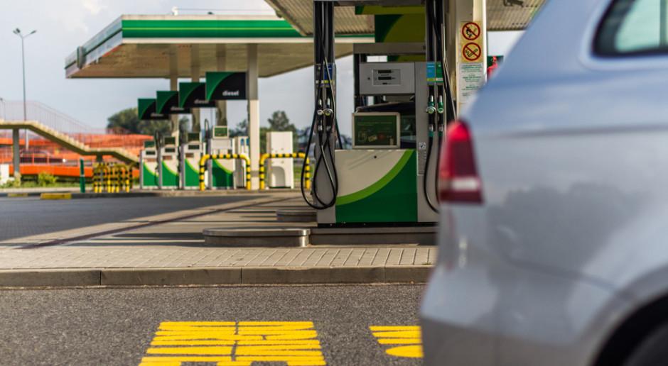 Na stacjach benzynowych najtańsza majówka od lat