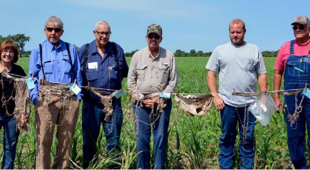 Kansas: Rolnicy zakopali majtki, żeby sprawdzić stan gleby