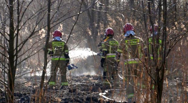 3,5 mln zł na rzecz ochotników gaszących Biebrzański Park Narodowy