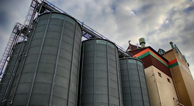 Giełdy krajowe: Ceny zbóż rosną, ale wolniej