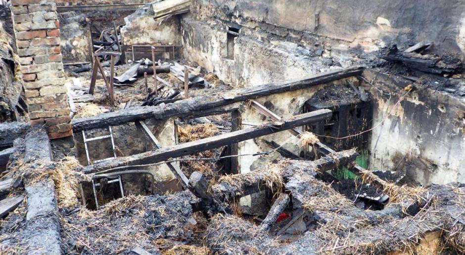 Wielki pożar w przedsiębiorstwie rolnym na Śląsku