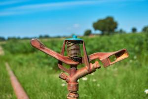 """""""Inwestycje odtwarzające potencjał produkcji rolnej"""" w zasadzie nie są dla poszkodowanych suszą"""