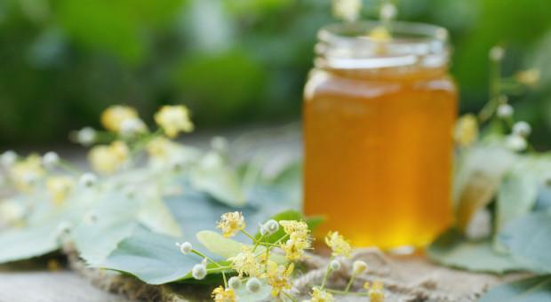 Podlascy pszczelarze mogą oznakować swoje miody wspólną etykietą promocyjną