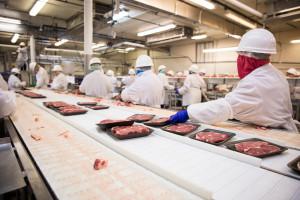 Koronawirus w zakładzie uboju i rozbioru wołowiny w Liskowie