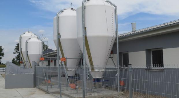 Masz pytania dotyczące bioasekuracji? Wyjaśnimy je!