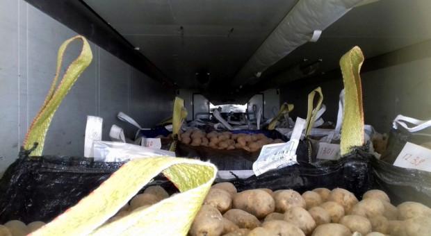 Za ciężkie transporty z warzywami i pieczarkami