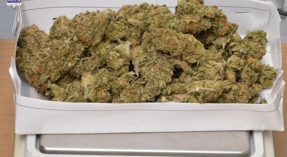 Marihuana ukryta w pryzmie obornika