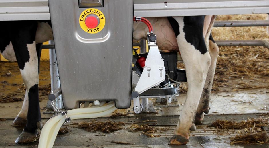 Dalsze spadki ceny mleka w skupie