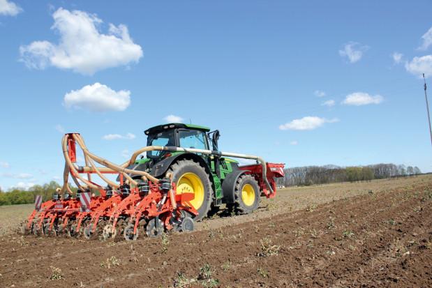 Azot pod kukurydzę na wiele sposobów