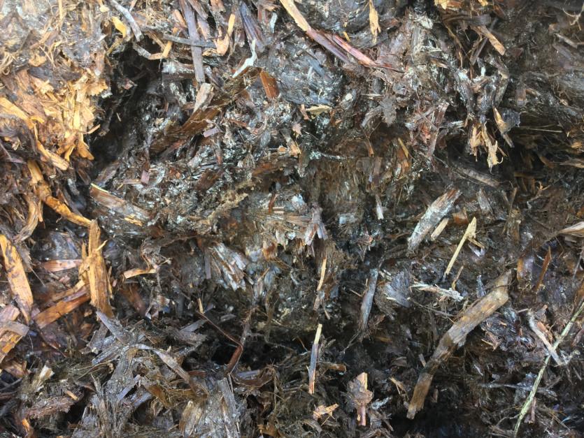 Rolnik zauważył, że obornik szybko się kompostuje i podczas rozrzucania na polu łatwo się rozpada.