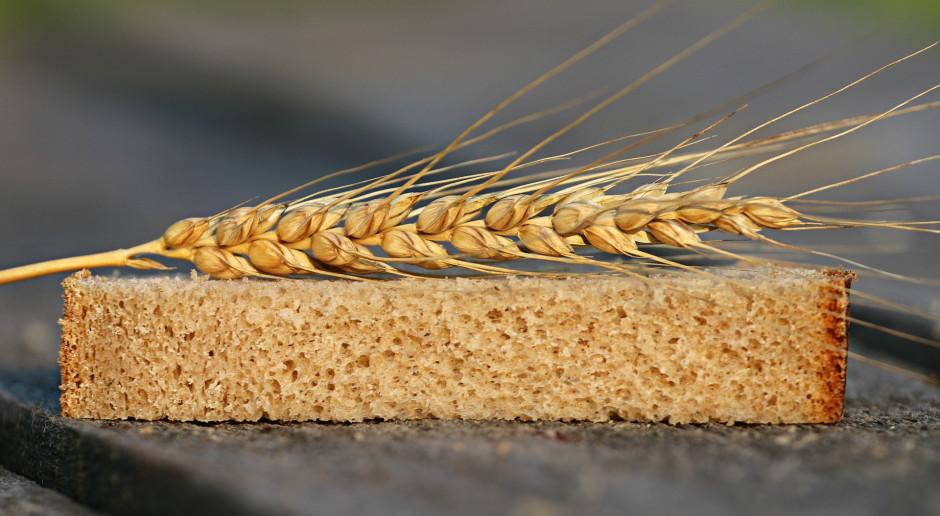 Od 25 maja ARiMR przyjmuje wnioski o dopłaty do nasion
