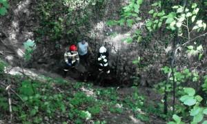 Zwierzę spadło z 10-metrowej skarpy do grząskiego dołu
