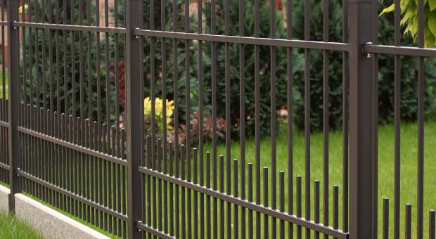 Poznaj 5 zasad na stworzenie ogrodu dla dzieci