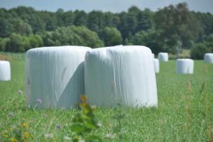 Nawożenie łąk po I pokosie