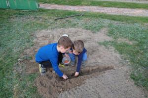 Chłopcy zdecydowali się wysiać kukurydzę w technologii bezorkowej. Dokonano głębokiego spulchnienia jedynie pasów, w których wysiane zostały nawozy oraz ziarno. fot. Tomasz Kuchta