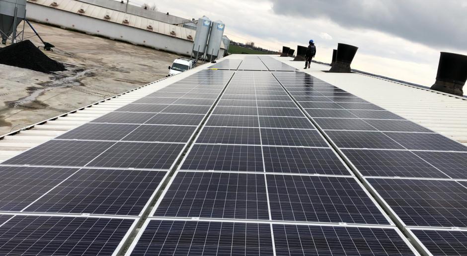 Im większa moc instancji fotowoltaicznej i zużycie energii elektrycznej w gospodarstwie rolnym, tym szybciej zwraca się inwestycja w fotowoltaikę, Fot. OZE Projekt Group