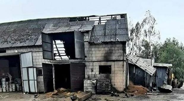 W pożarze gospodarstwa zginęło 11 cieląt