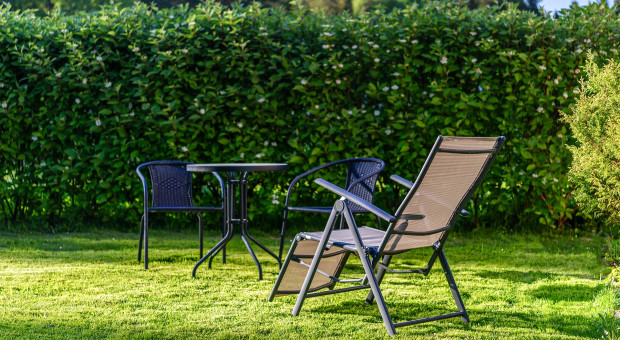Jak dbać o trawnik w czasie suszy?