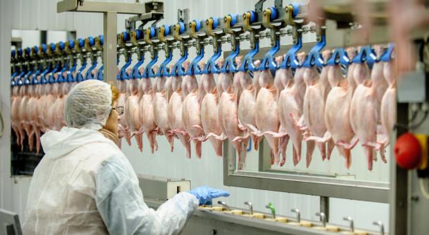 PK: kolejne zatrzymania ws. grupy przestępczej, działającej na terenie zakładów mięsnych
