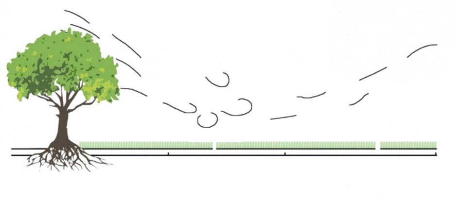 Odległość od zadrzewienia wyrażona wartością krotności jego wysokości (h)